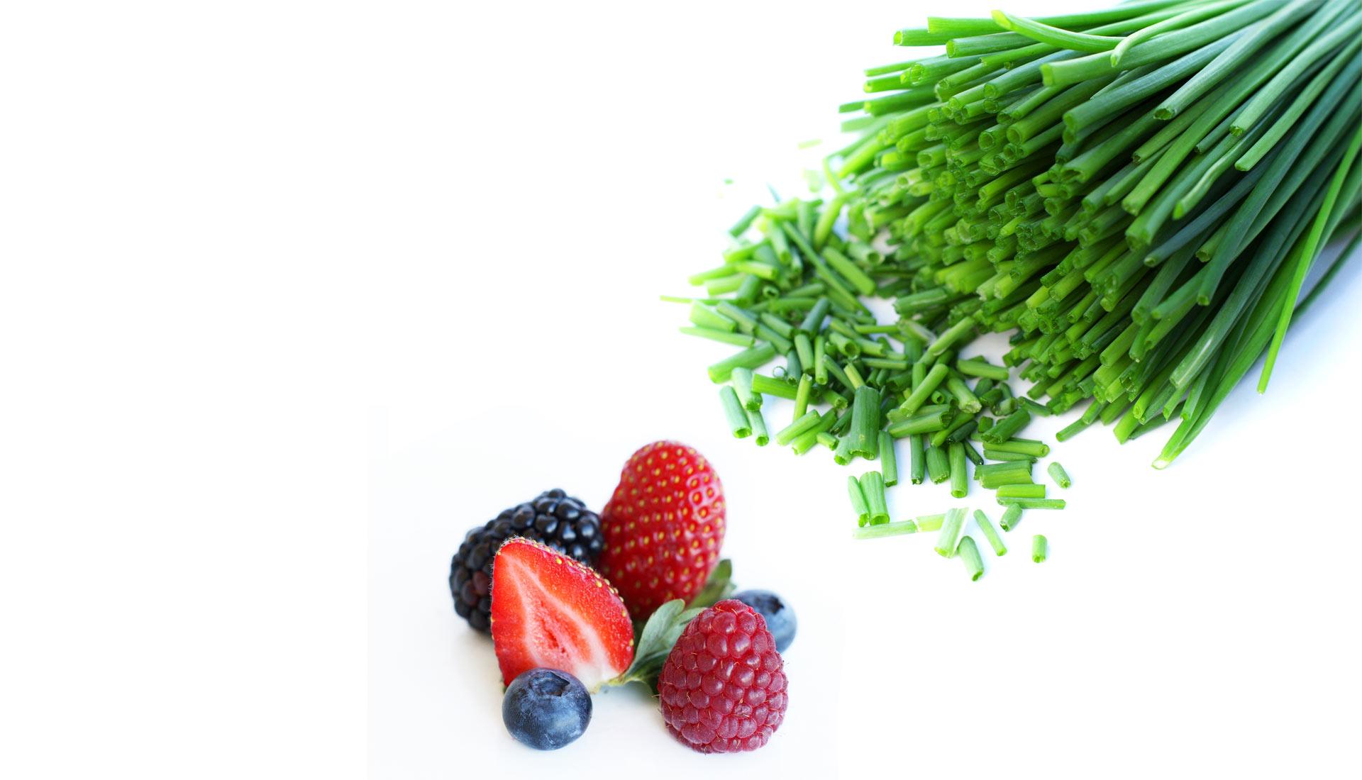 Kimon Fruits